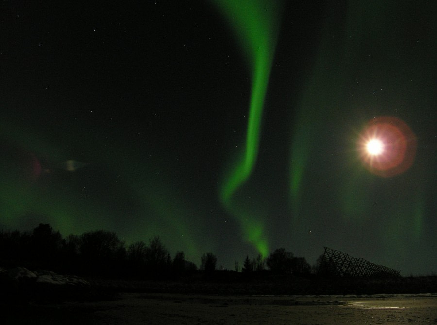 Aurora Borealis above Lofoten