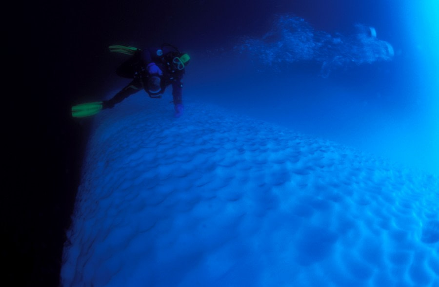 Polar Diving, Antarctica