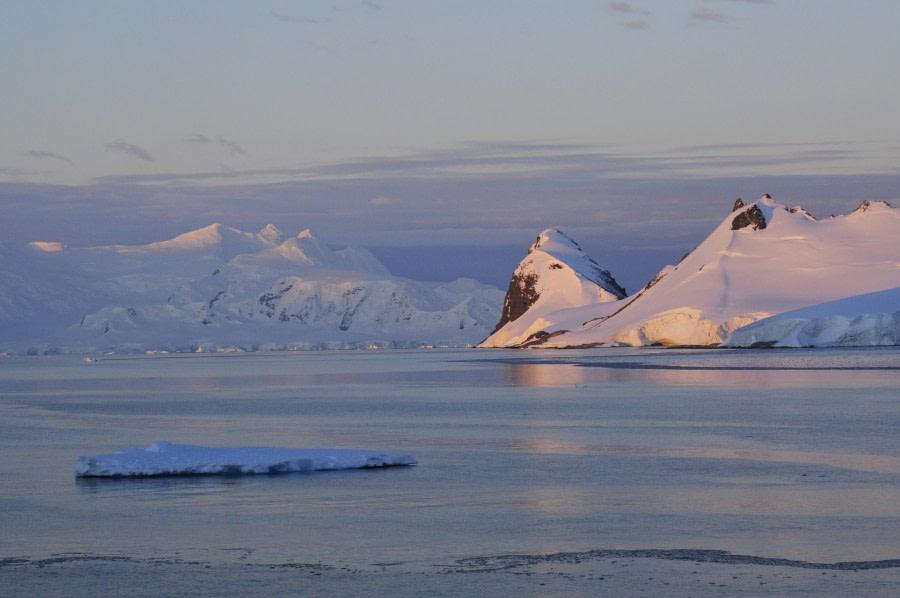 Gerlache Strait, Antarctica, February © Elke Lindner-Oceanwide Expeditions.jpg