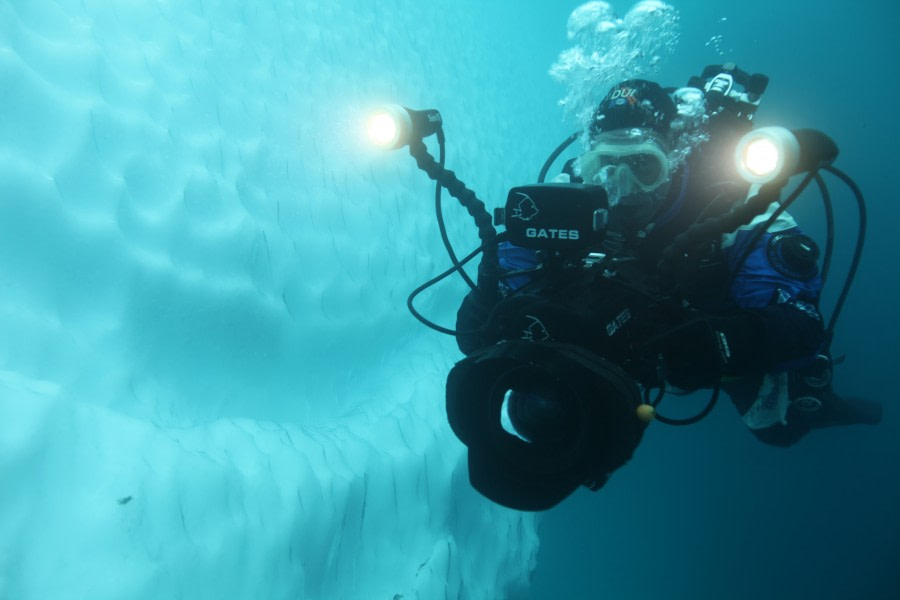 Diving, Antarctica, March © Miss Scuba-Oceanwide Expeditions.JPG