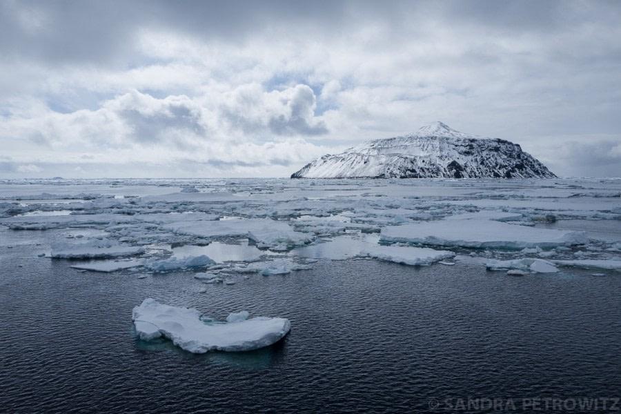 Antarctic Peninsula: Paulet Island & Brown Bluff