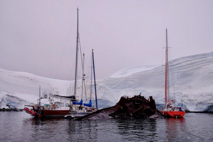 PLA28-17_Foyn Harbour 11.02.17 C.Vanman-Oceanwide Expeditions.jpg