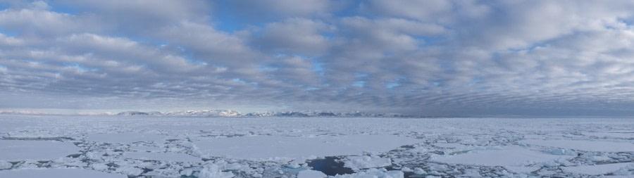 Im Packeis nördlich von Spitzbergen