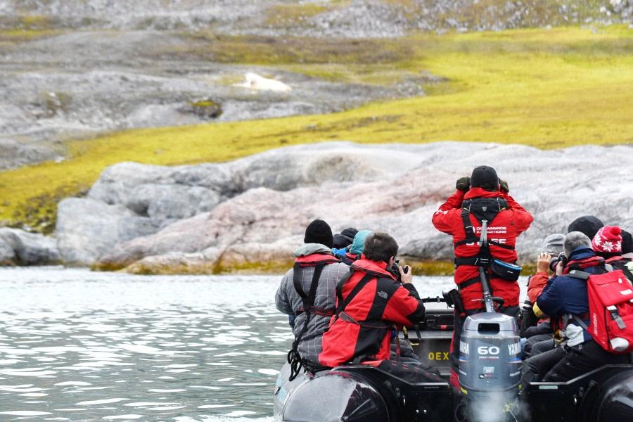 Ny Alesund, Zodiac cruise © Geert Kroes - Oceanwide Expeditions.jpg