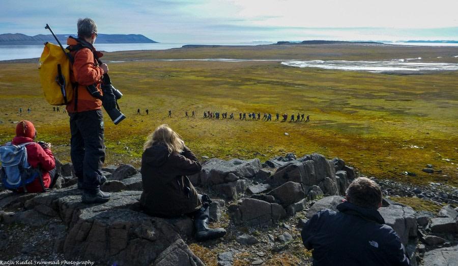 PLA11-17, Day 7, Round Spitsbergen20170730_Katja Riedel_P1910215-Oceanwide Expeditions.jpg