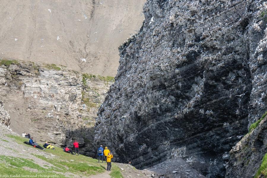 PLA11-17, Day 7, Round Spitsbergen20170730_Katja Riedel_DSC_2670-Oceanwide Expeditions.jpg