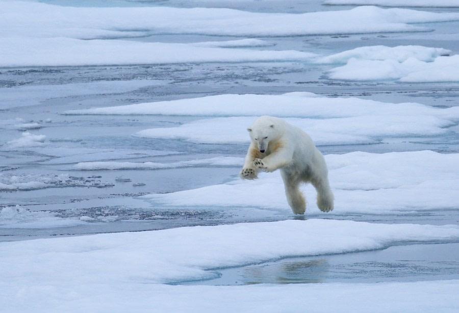 OTL13-17, Day 4, HD6A6007_© Oceanwide Expeditions.jpg