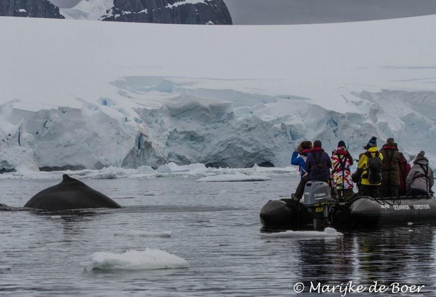 Portal Point and Wilhelmina Bay, Antarctica