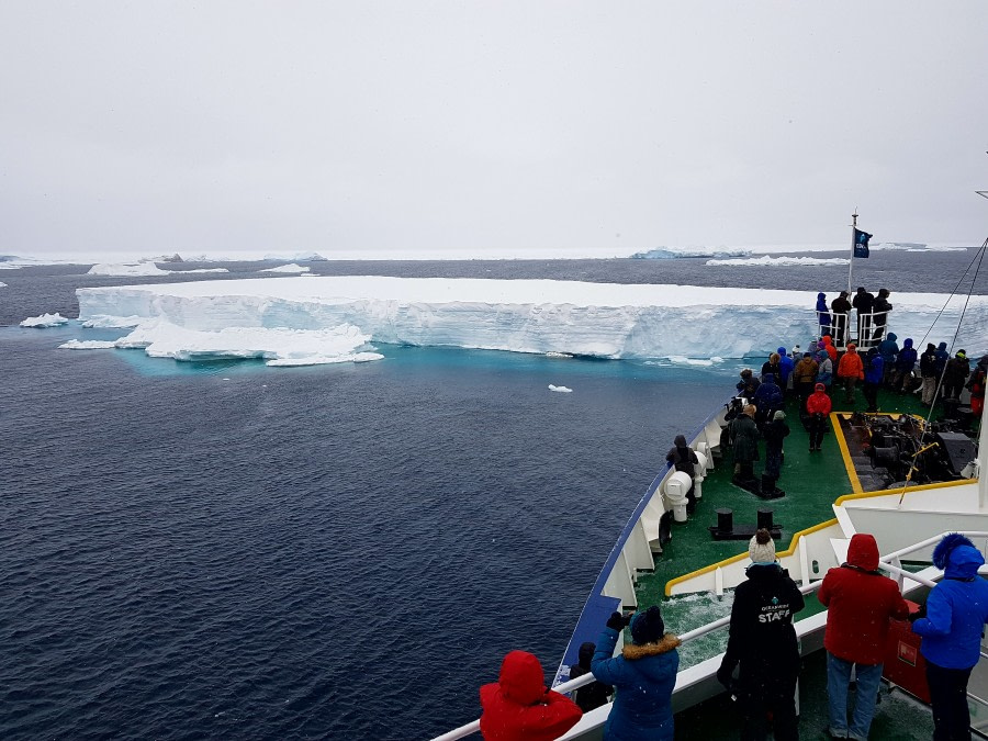 Antarctic Sound and Brown Bluff, Antarctica