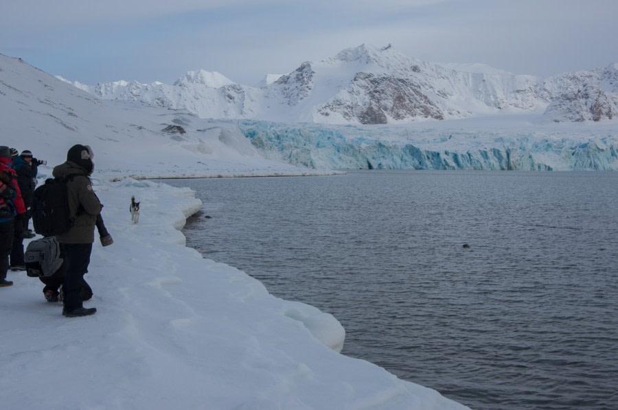 Spotting a seal, Arctic Spring © Joerg Berning IMGP4150-35.jpg