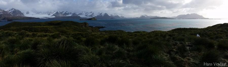 PLA35-18 20180402_150635-HansVerdaat © Oceanwide Expeditions.jpg