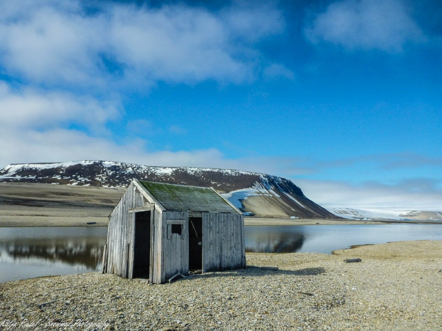 Palanderbukta und Alkefjellet