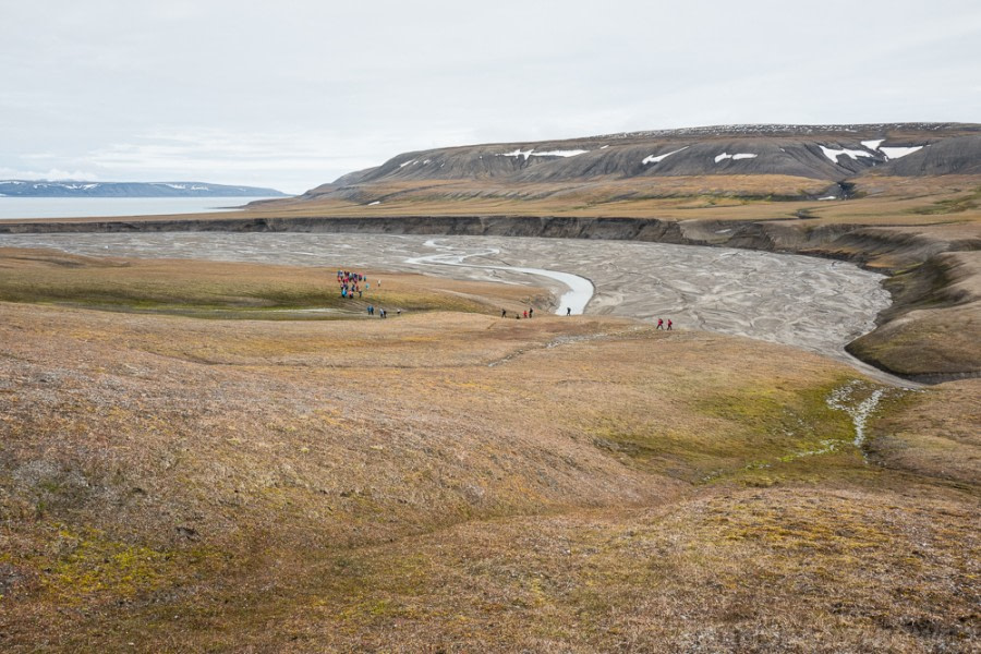 Freemansundet: Isbjørnodden & Kapp Lee