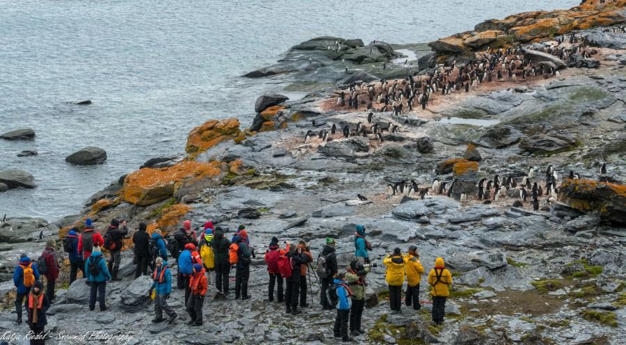 South Orkneys & Sea day, en route to Antarctica