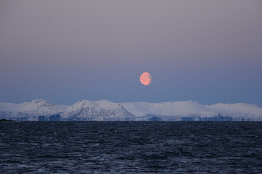 North Norway © Florian Piper - Oceanwide Expeditions.JPG