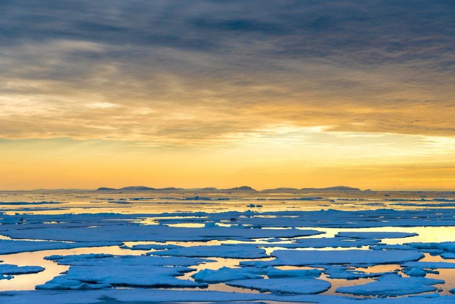 Around Spitsbergen, Kvitoya, August © Zoutfotografie-Oceanwide Expeditions (140) - kopie.JPG