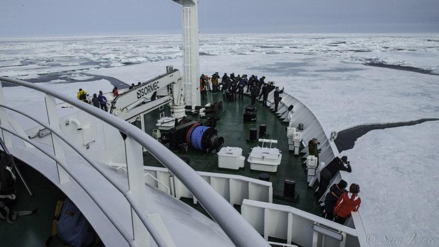 Pack ice, Northernmost latitude