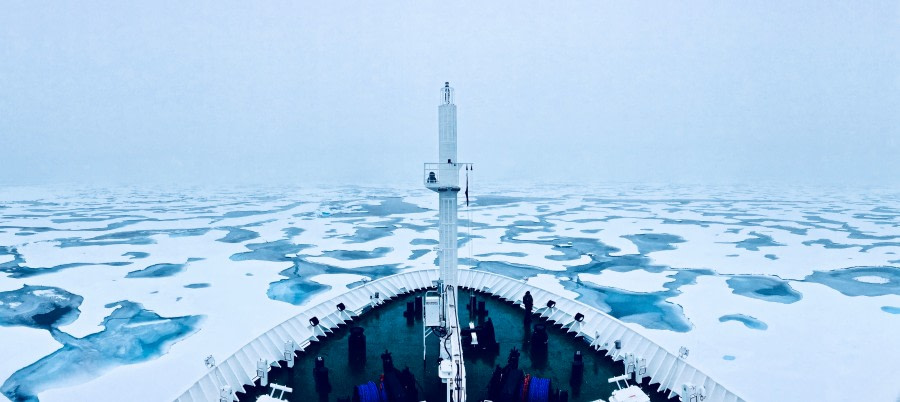 Pack ice – in search of Polar bears