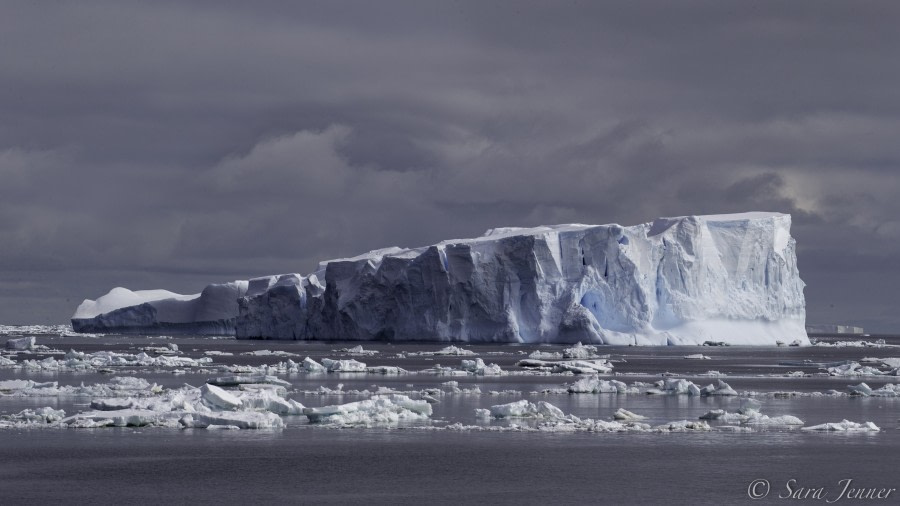 PLA24-19 Day 12 Ice - Oceanwide Expeditions.jpg