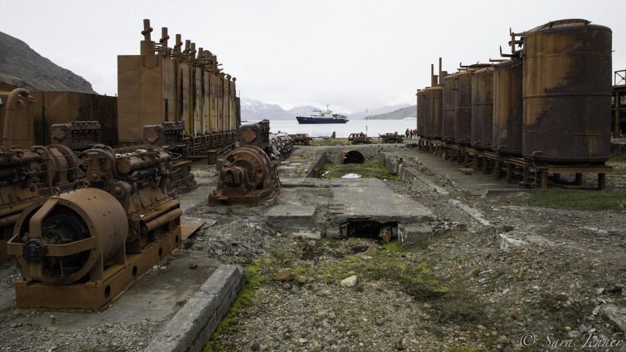 Ocean Harbour - Grytviken
