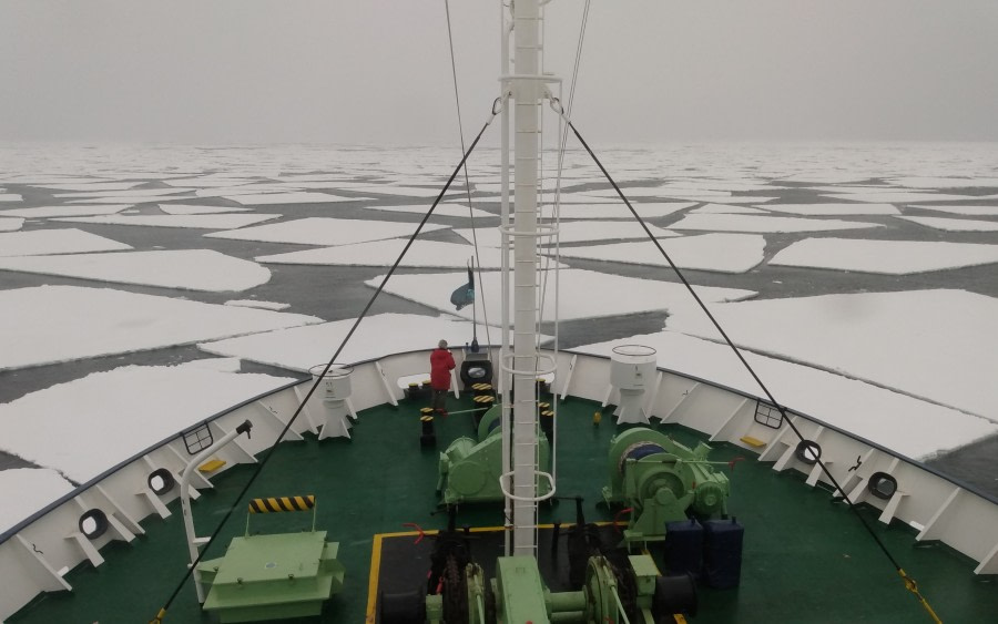 Ross Sea – Terra Nova Bay