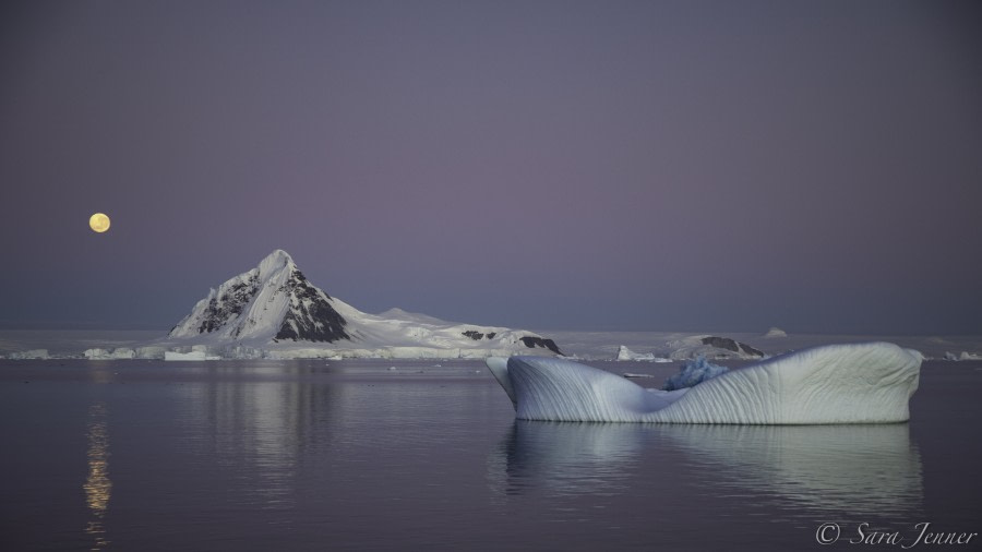 The Antarctic Peninsula: The Gullet and Horseshoe Island