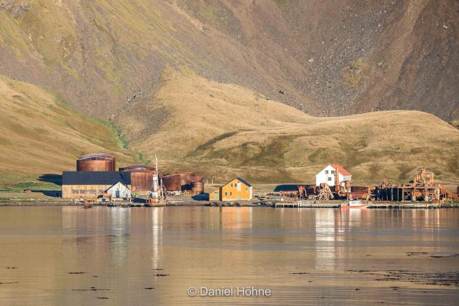 South Georgia: Grytviken and Jason Harbour