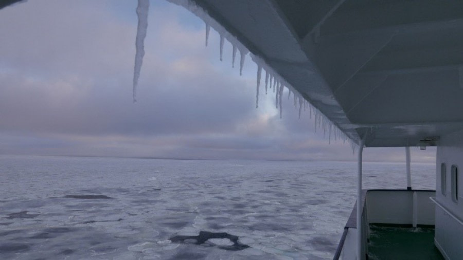 In the Ross Sea, Antarctica