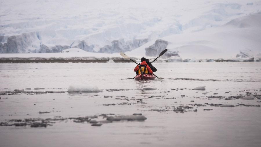 Antarctic kayaking © Dietmar Denger - Oceanwide Expeditions (3).jpg