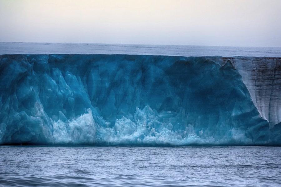 Glacier_Bear-Rudolph-island.jpg