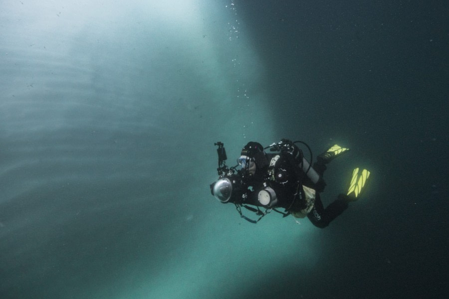 Iceberg diving © Alexander Kassler - Oceanwide Expeditions (14).jpg