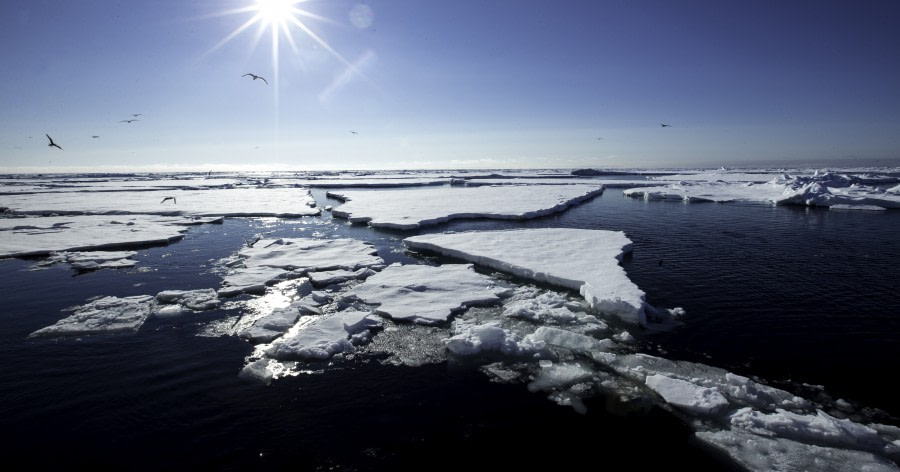 Arctic pack ice © Sara Jenner - Oceanwide Expeditions