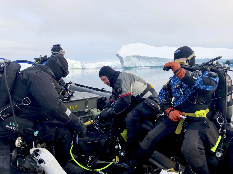Zodiac with divers, Antarctica © Tanja Bayer - Oceanwide Expeditions.jpg