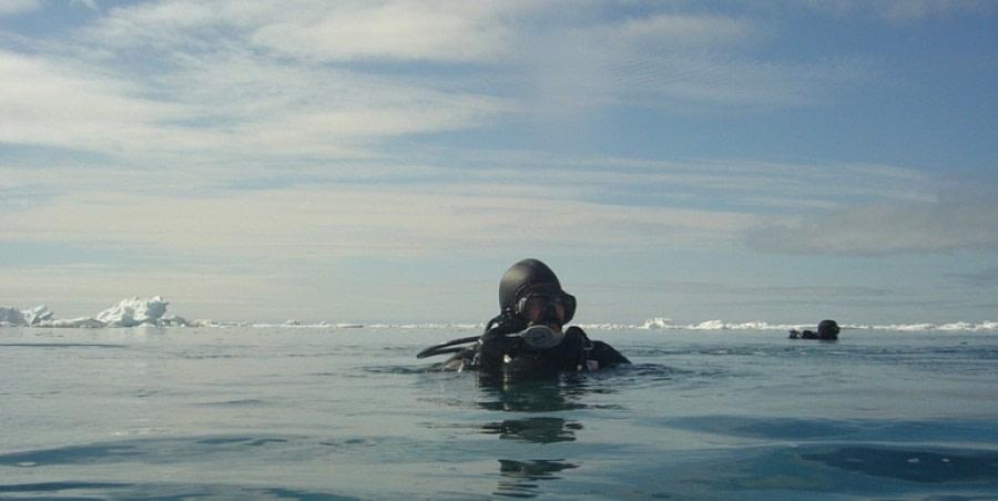 Divers in Svalbard © Francois de Riberolles - Oceanwide Expeditions (1).jpg