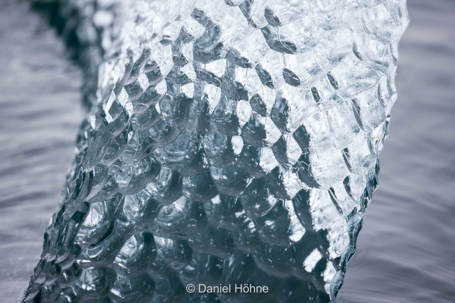 Glaciology, Clear ice © Daniel Hoehne - Oceanwide Expeditions.jpeg