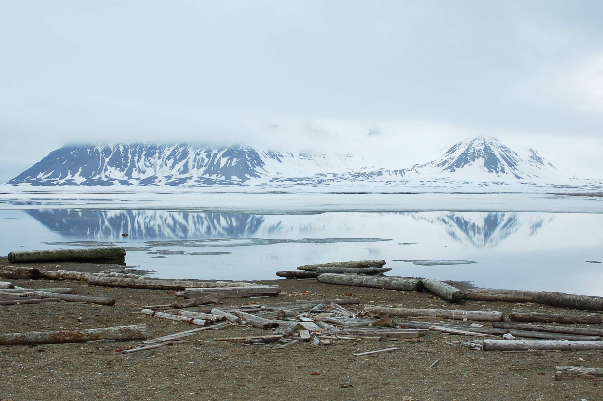 Poolepynten, Spitsbergen, June