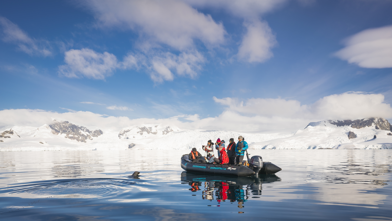 Falklands, South Georgia, Ant Peninsula © Fotografie Dietmar Denger-Oceanwide Expeditions277.jpg