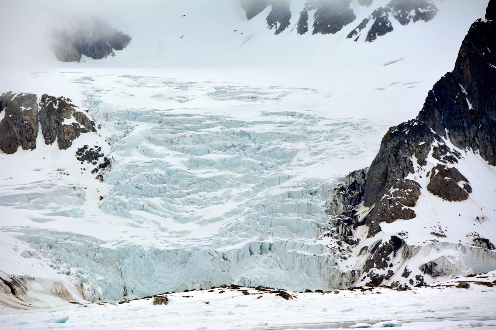 North Spitsbergen, Arctic Spring, June Glacier2 © Peter Tadin-Oceanwide Expeditions.jpg