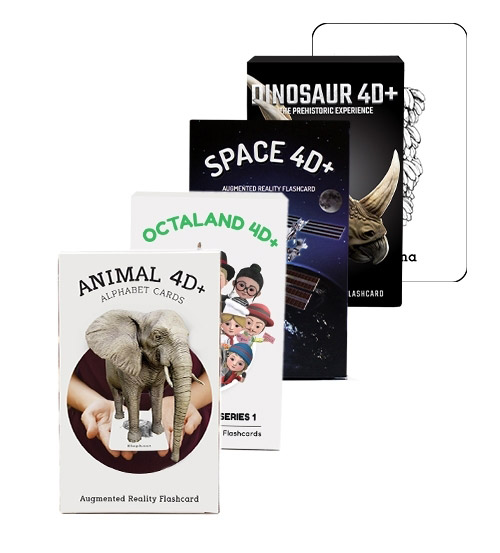 Flashcards Bundle
