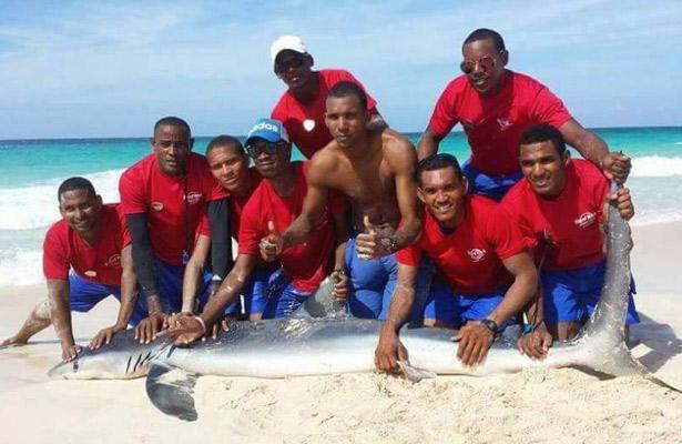 Matan a un tiburón y se graban con él