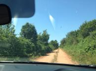 Draganiuk Woods Adventures!