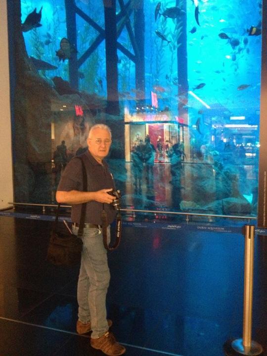 Dubai Mall Indoor Aquarium Bernallen Euro 2013 Off