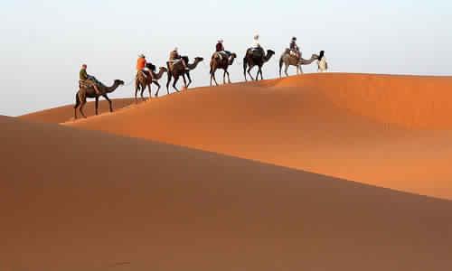 Camel Trekking's Travels