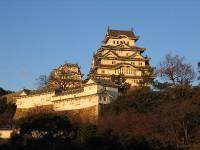 My Japanese Trip