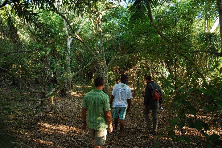 Wandeltoch door de Pantanal