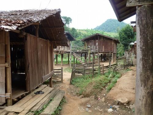 Hutjes van de hill tribe village