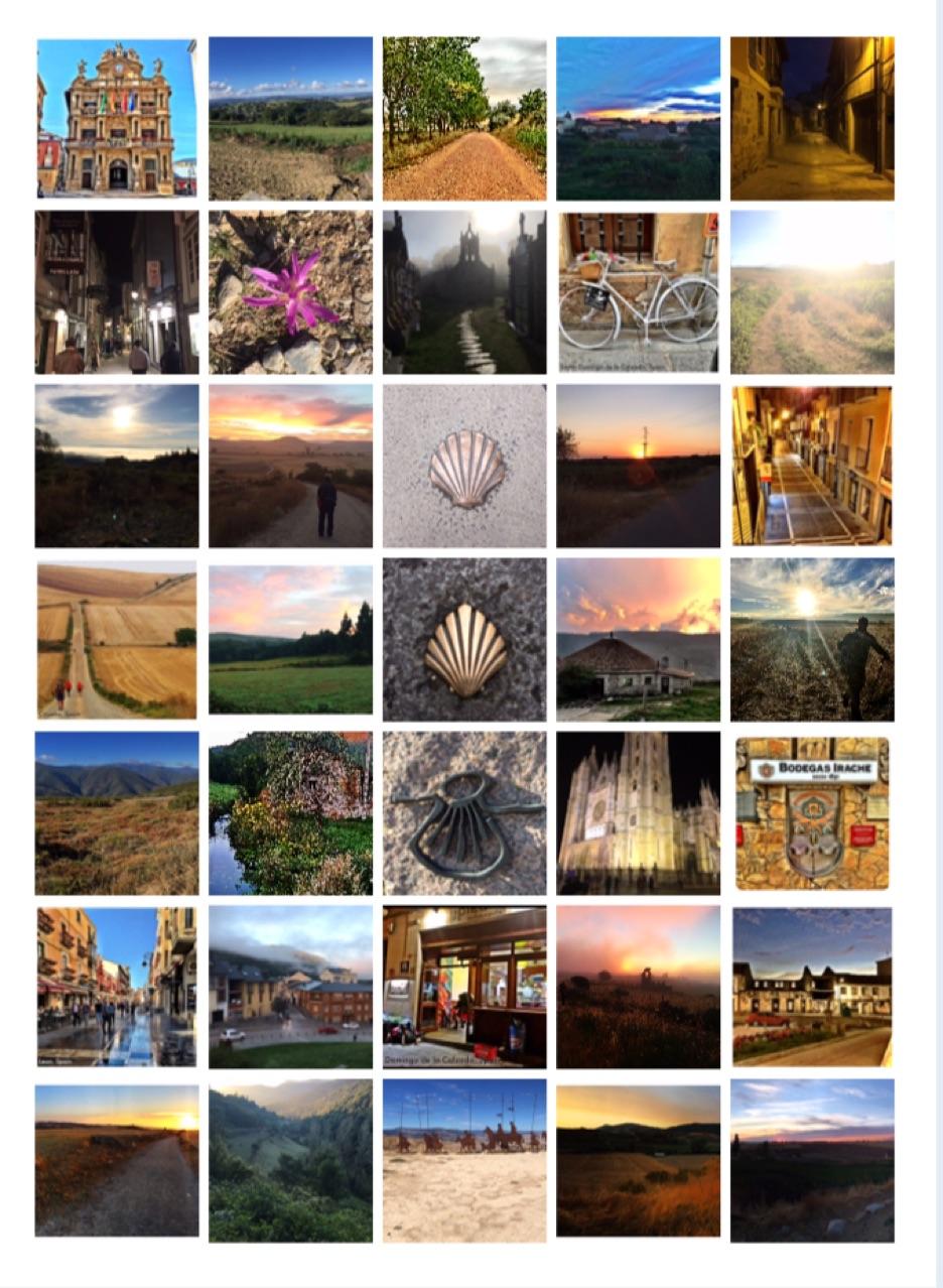 My Camino Journey