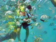 Travel Pulau Seribu Wisata Jakarta