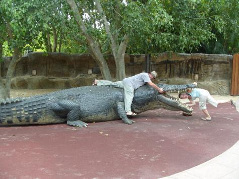 Largest crocodile ever - photo#14