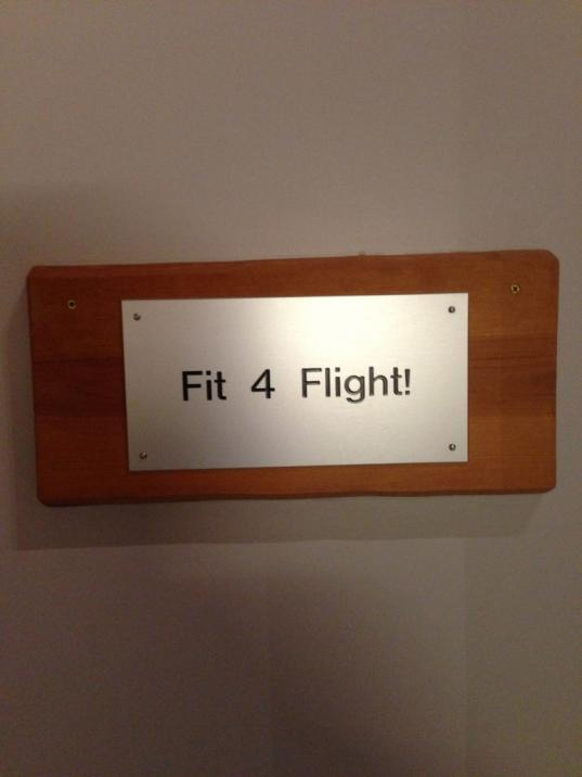 Fit for flight